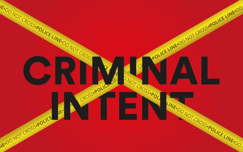 Benvenuti su Criminal Intent
